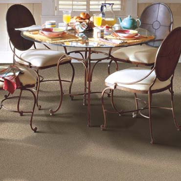 Horizon Carpet | Centreville, VA